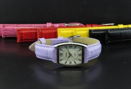 Ladies Fashion Watch with 5 Straps